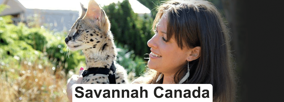 Savannah Canada