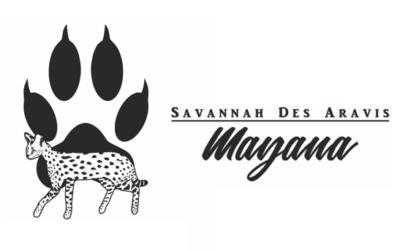 Savannah des Aravis – Mayana